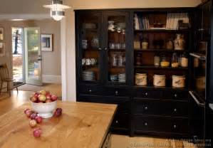 black kitchen cabinets design ideas pictures of kitchens traditional black kitchen