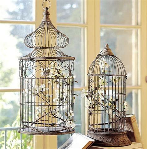 decoration of decor or how to use a cage for birds in the