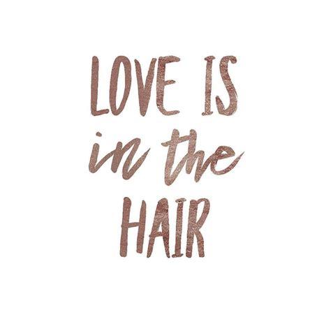hair quotes hair quotes luxury hair salon quotes jigsawforhair