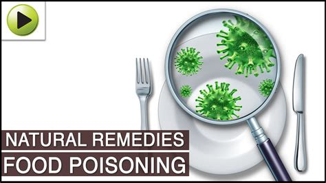 home remedies for food poisoning doovi