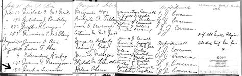 Cork County Ireland Birth Records Ahern