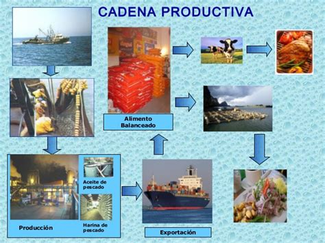 cadena productiva harina de pescado capacitacion norma gmp fsa
