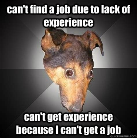 Get A Job Meme - can t find a job due to lack of experience can t get