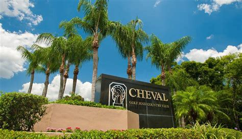 cheval real estate in lutz florida 33558 54 realty