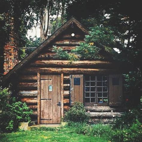 cabin cabin and woods on
