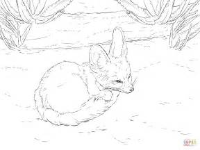 cute fennec fox walks for coloring pages coloring pages