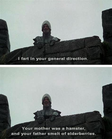 monty python quotes holy grail holy grail taunting quotes www picsbud