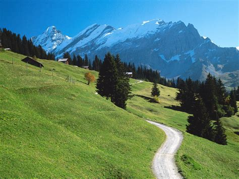 in switzerland bernese oberland switzerland picture bernese oberland
