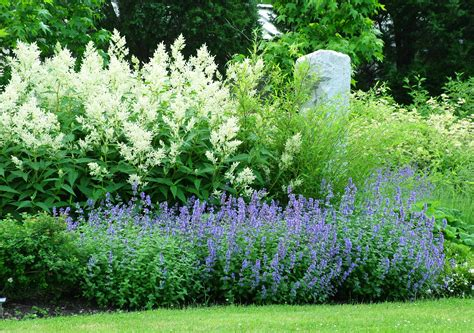 Backyard Landscape Design jerry fritz garden design linden hill gardens amp jerry