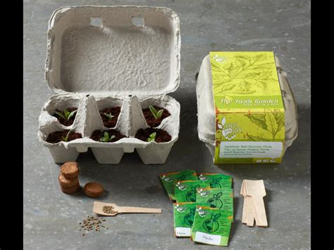 unwins kitchen garden herb kit on sale fast delivery herb garden kits home design ideas and pictures