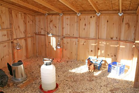 plans for a chicken house amish chicken coop plans download 5 blueprints for chicken coops plans diy free