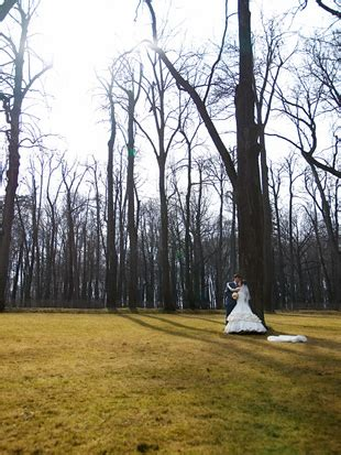 Wedding Photography Business by How To Start A Wedding Photography Business