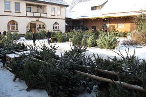 bauers weihnachtsbaum termine und veranstaltungen hof behrens in dungelbeck