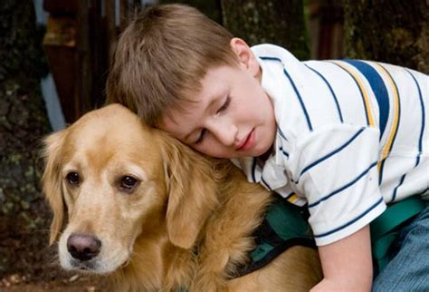 autistic puppy dogs can calm autistic schools but schools must change their the pet product guru