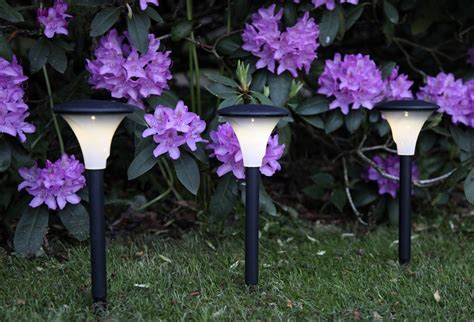 solar lights for driveway garden solar lighting ideas and tips