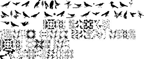 animal pattern font love birds pattern regular premium font buy and download
