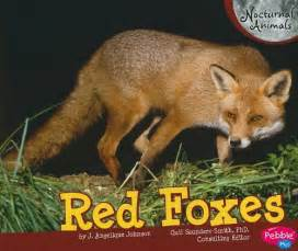 Red foxes nocturnal animals