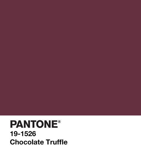 truffle color 110 best images about pantone on sky