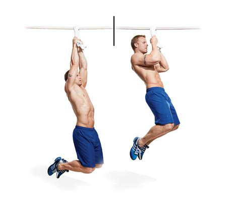 exercises in style new 0811220354 blow up your forearms in four weeks