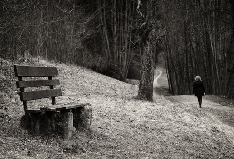 Image De Banc by Solitude D Un Banc Einsamkeit Einer Bank Photo Et Image