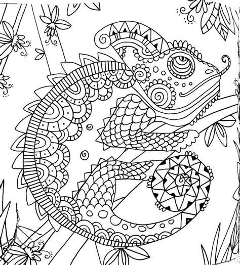 mandala coloring pages livro livro de colorir floresta m 225 gica coloring pages