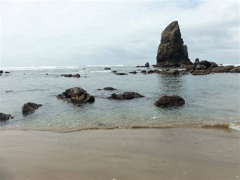 haystack rock tide pools tide pools pinterest