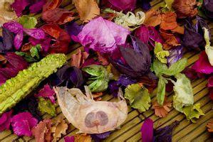 conservazione fiori recisi come conservare fiori con glicerina deitranet