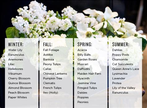 7 Types Of Flowers To For A Winter Wedding by Comprehensive List Of Popular Seasonal Flowers Rue
