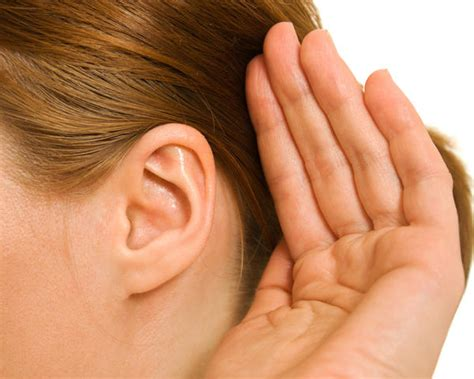 what to do if your has an ear infection what to do if you fluid in your ear new doctor insights