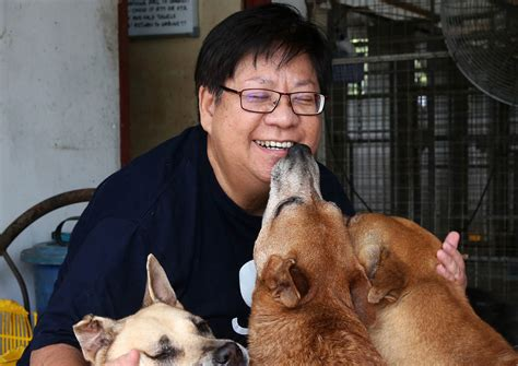 Komik Second Animal Doctor doctor gives up 5 figure salary to save dogs singapore news asiaone
