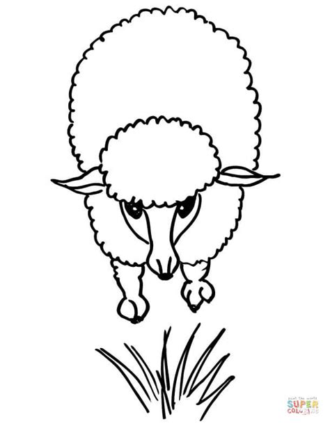 cute lamb coloring pages cute lamb coloring page free printable coloring pages