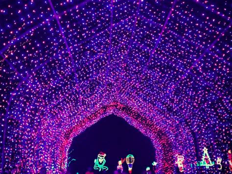 light show in pa shady brook farm light show what you need to know for