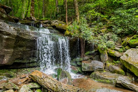 Best Cabins In The Smoky Mountains by The 5 Best Waterfall Hikes In The Smoky Mountains
