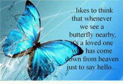 butterfly sayings butterfly quote quotes from boards