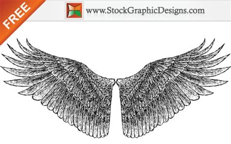 imagenes vectoriales alas dibujado a mano libre alas vectoriales descargar