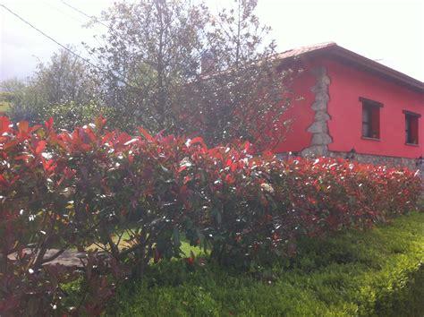 alquiler casa rural en asturias casas rurales en asturias de calidad