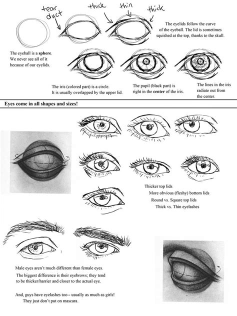 doodle drawing tutorials drawing worksheet by ccrask on deviantart