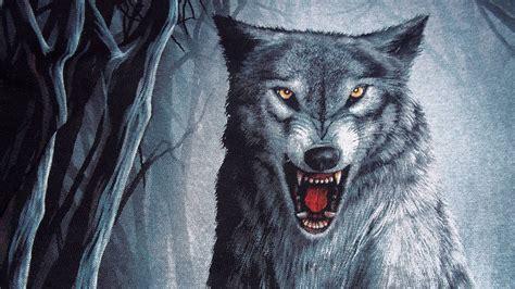 hd wallpapers 1920x1080 wolf wolf wallpapers 1920x1080 wallpaper cave