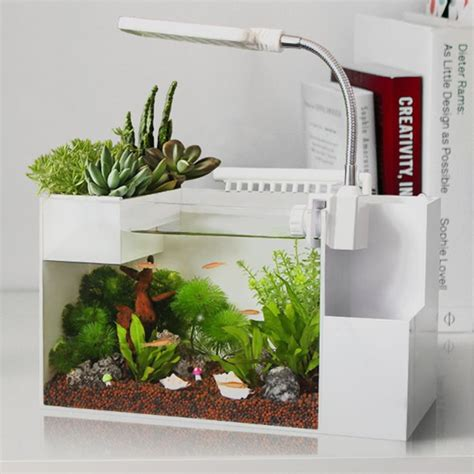 Fish Tank Desk Organizer 25 Best Ideas About Small Fish Tanks On Betta Tank Betta And Mini Stuff