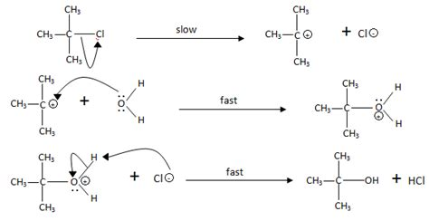 3 carbohydrates exles hydrolysis diagram 28 images hydrolysis of maltose