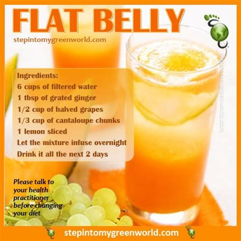 Flat Belly Diet Detox Menu by Just Sounds Fitness Flats