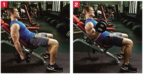 incline bench dumbbell curl image gallery incline db curl