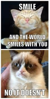 No Grumpy Cat Meme - grumpy cat meme no pictures to pin on pinterest pinsdaddy