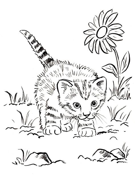 cat with kittens coloring page kitten coloring pages best coloring pages for kids