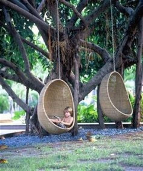 cool tree swings 1000 images about garden ideas by the dozen on pinterest
