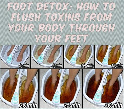 Epsom Salt Foot Detox Lyme by 1000 Ideas About Foot Detox Soak On Detox