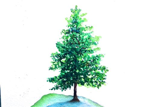 tutorial watercolor trees pine tree watercolor tutorial for beginners how to paint