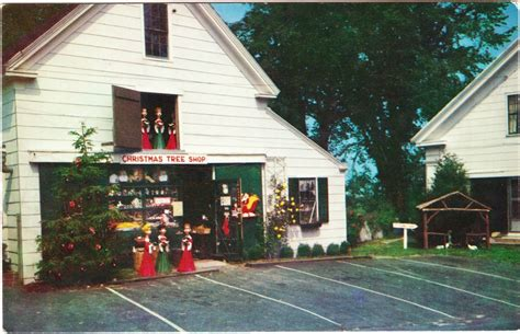 papergreat postcard the original christmas tree shops