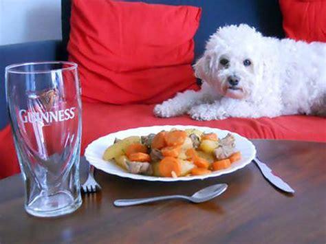 cuisine irlandaise typique recette d stew typique rago 251 t irlandais