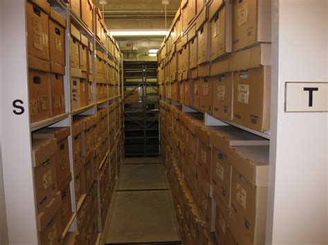 storage room day of archaeology